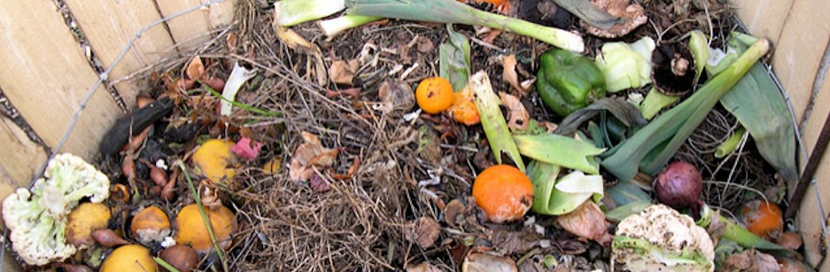 Waste food in a home compost bin