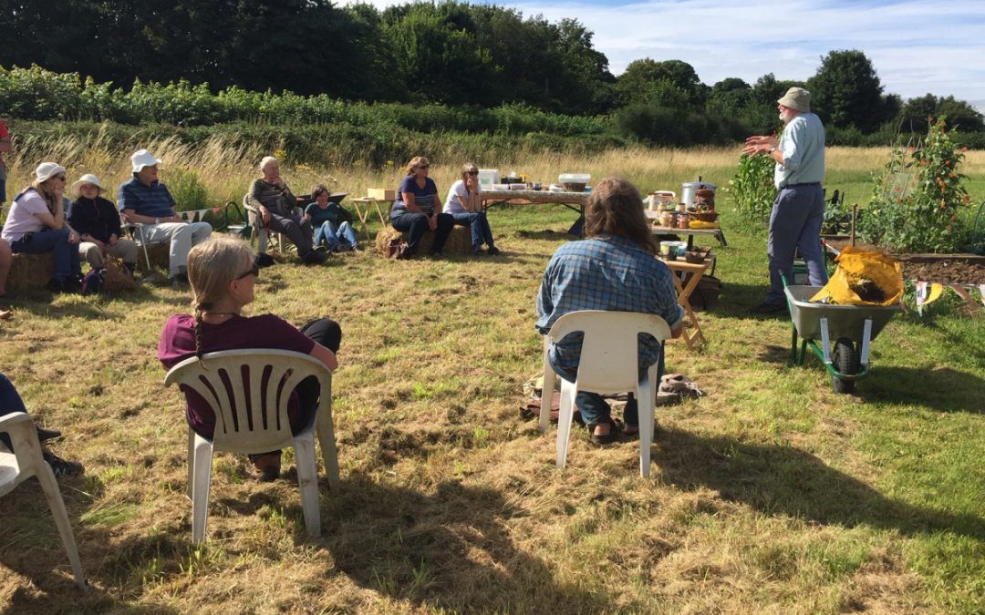Plotting for the Future: Peat Free Compost